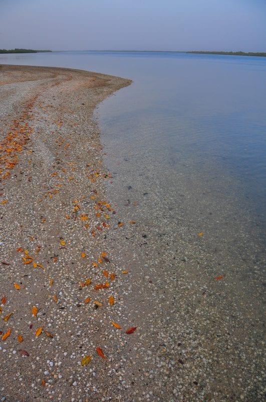 Playa en la Île aux Coquillages