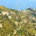 Montes Fayfa